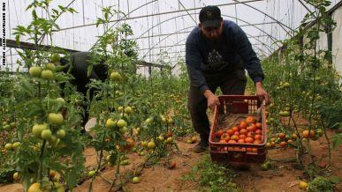 تواضع التبادل التجاري مع الأردن والخليج مقارنة بإسرائيل